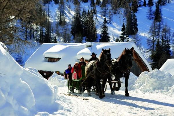 Ausritte, Pferde und Kutschenfahten
